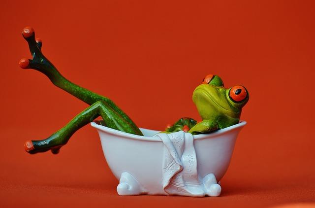 frog-1248936_640